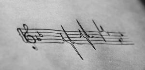 viva muziko