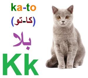 gatto-kato en la araba
